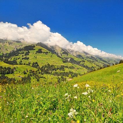 0_Switzerland_featured