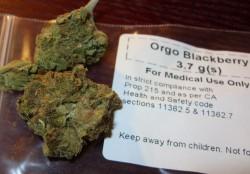 medicinal cannabis 1
