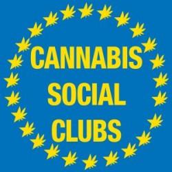 How does a Cannabis Social Club work?