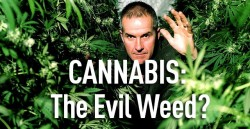 Cannabis-The-Evil-Weed