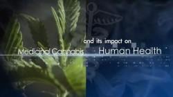 10 must-see cannabis documentaries – Part 2