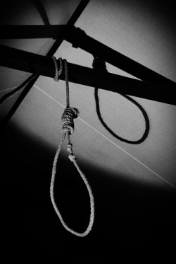 A hangman's noose tied around a wooden beam
