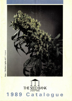 002_SENSI_SEEDS_Strains_that_made_our_brand