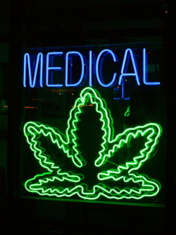 The debate in favour of the legalisation of cannabis for medicinal use is a current issue in Australia (CC.Chuck Coker)