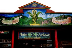 The aim of the Hemp Embassy is to reform Australia's cannabis laws (CC.Nicki Fernades)