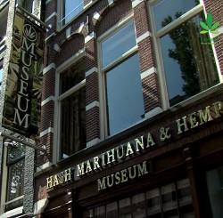 Thai delegation investigating Dutch coffeeshops – Cannabis News Network