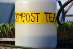 Compost tea is a cheap and effective way to improve soil health (© Suzie's Farm) - Sensi Seeds Blog
