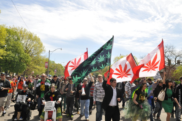 Cannabis legalization – what happened in 2015? An overview