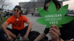 Legalizar Uruguay 2013
