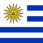 Mujica se va. ¿Lo hará también la legalización del cannabis en Uruguay?