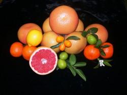 Al igual que el cannabis, los cítricos contienen limoneno, linalol, citral, y γ-terpineno (Agrilife Today)