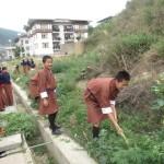 Cannabis en Bután