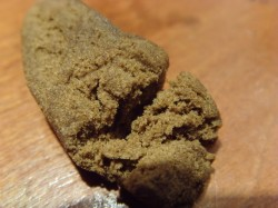 morocco hash sensi seeds blog