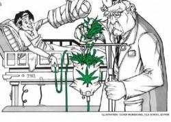 medicinal2
