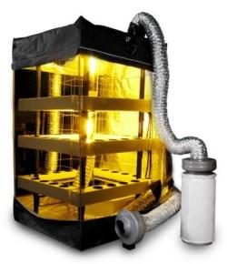 El uso de un sistema vertical, como este armario BuddhaBox VerticalPonics, permite grandes rendimientos en espacios pequeños.