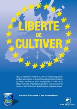 Les Cannabis social clubs français défendent une production et une distribution raisonnable parmi les consommateurs, excluant de ce fait les organisations criminelles.