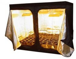 """Près de 400 boutiques se spécialisent dans la vente d'outils et accessoires pour """"cultiver en appartement"""", tels que des tentes de culture."""