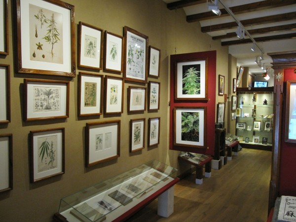 Hash Marijuana & Hemp Museum - Sensi Seeds blog