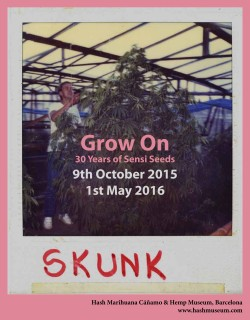 Grow On Sensi Seeds