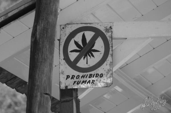 Les juges de la Cour suprême estiment que l'interdiction de fumer de la marijuana viole les droits des Mexicains (CC. Fabian Kopetsckny)