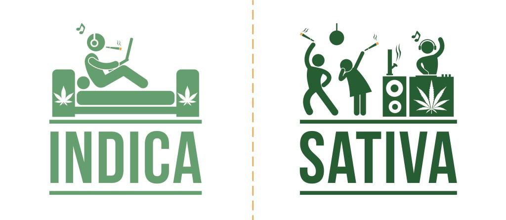 Verschil tussen indica en sativa - effecten indica sativa
