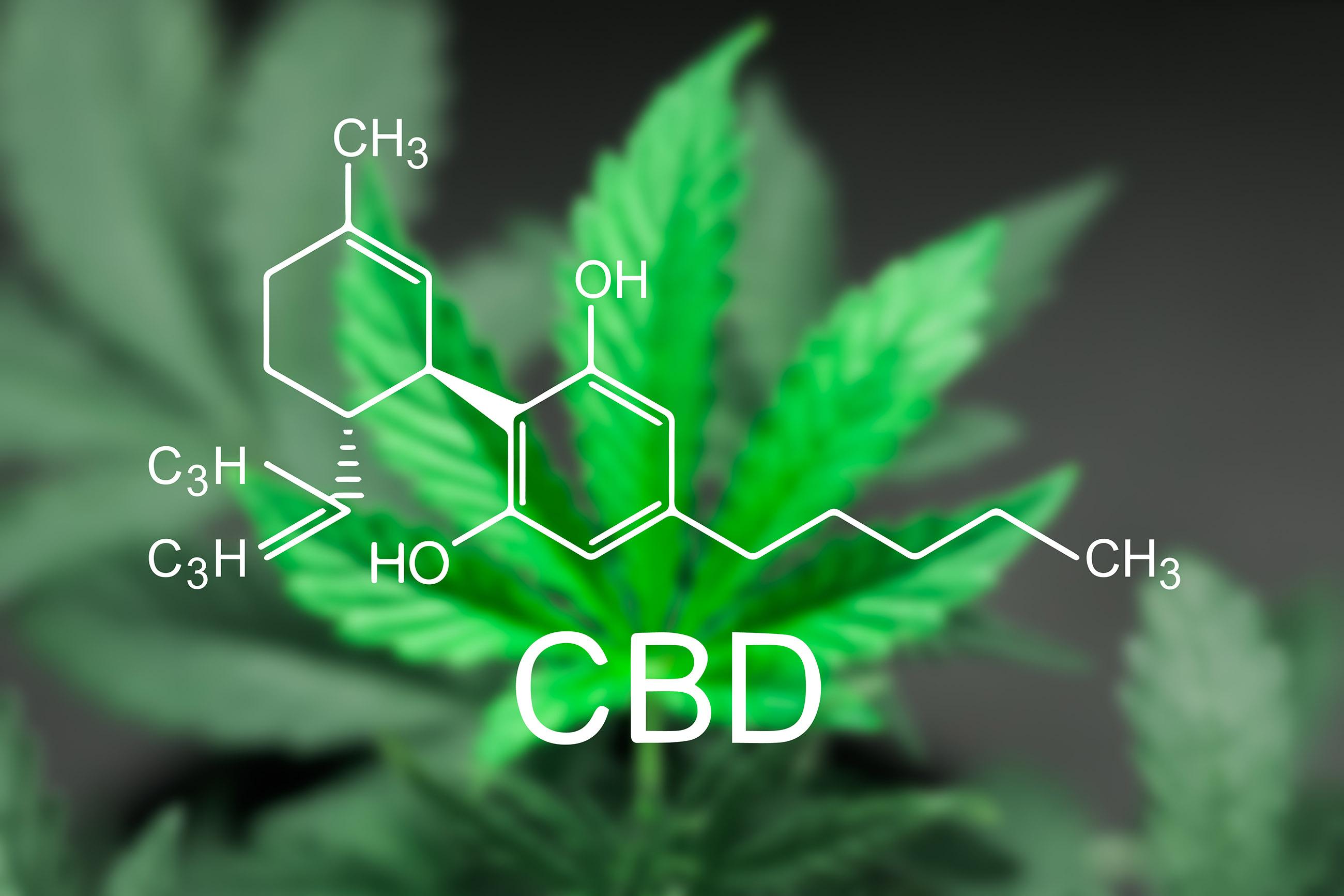 Wie man eine medizinische Cannabissorte auswählt
