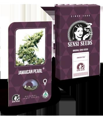 Nasiona Jamaican Pearl