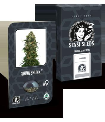 Shiva Skun