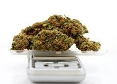 cannabis ounce