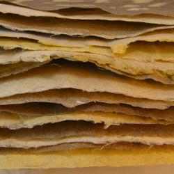 Taylor vertelt dat veel beroepsgroepen hun brood verdienden met hennep, zoals papiermakers (CC. Smallest Forest)