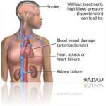 Konopie i nadciśnienie tętnicze
